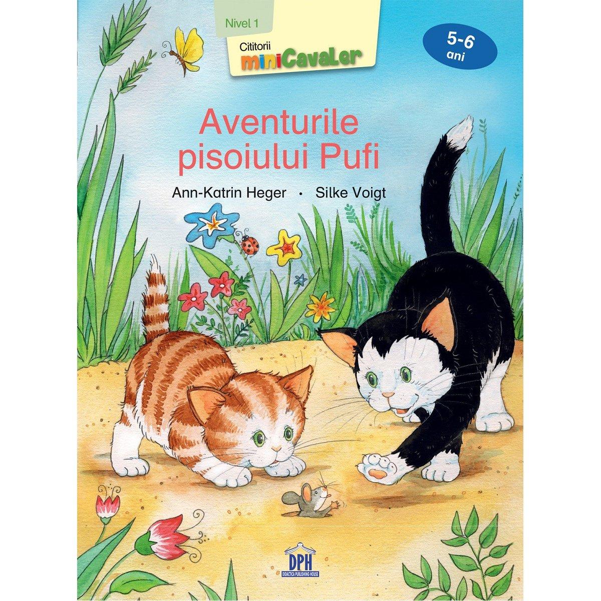 Carte Aventurile pisoiului Pufi, nivel 1, 5-6 ani, Editura DPH