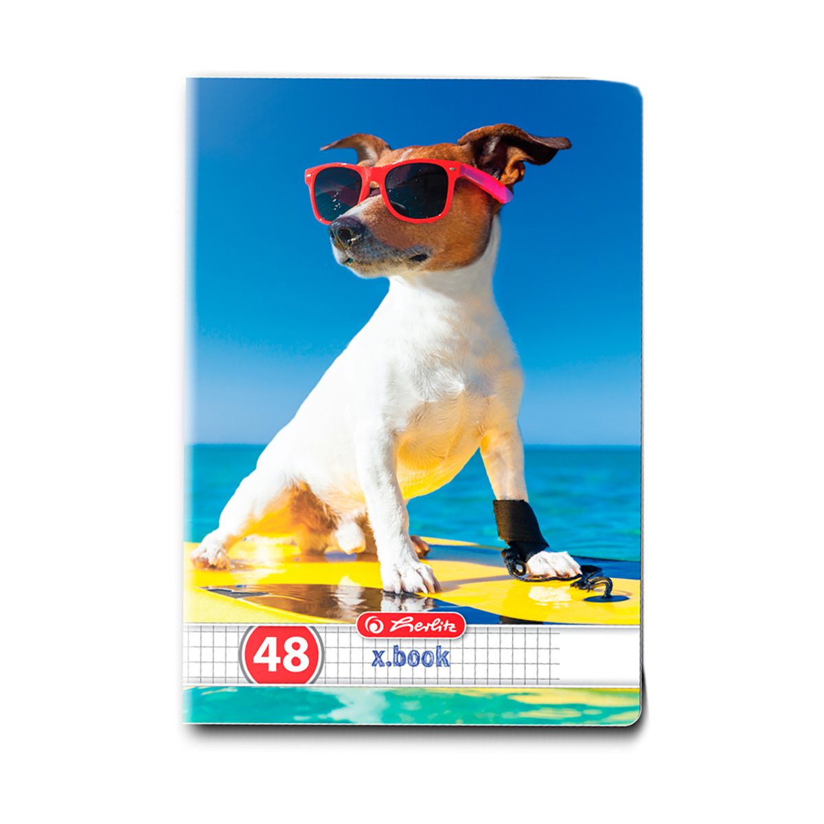 Caiet matematica Herlitz, A5, 48 file, Cool Dog