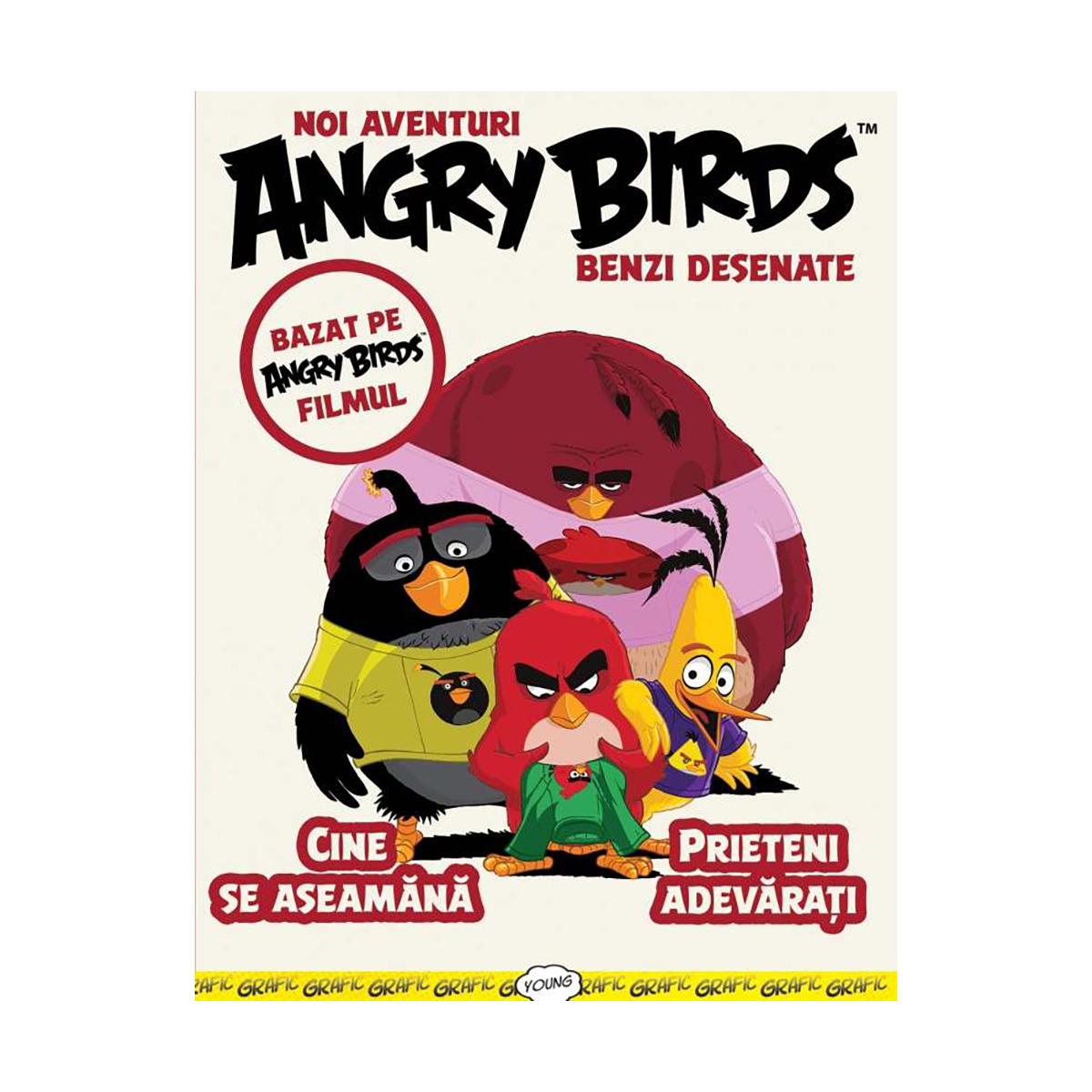 Carte Angry Birds, benzi desenate