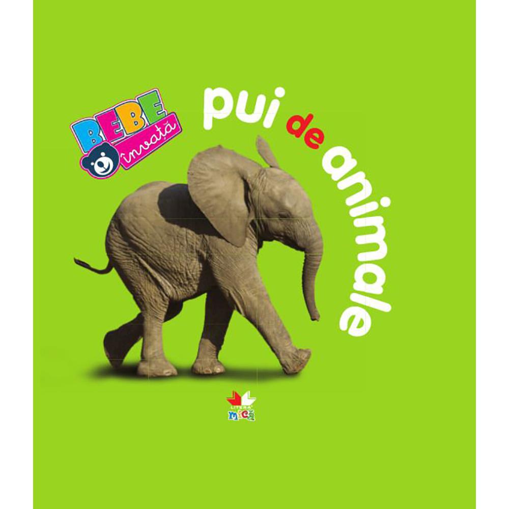 Carte Editura Litera, Pui de animale. Bebe invata. Ed a III-a