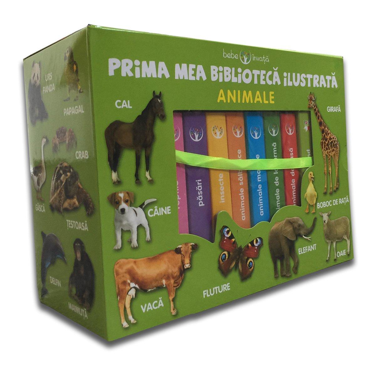 Set cutie cu 8 carticele bebe Editura Litera, Prima mea biblioteca ilustrata, Animale