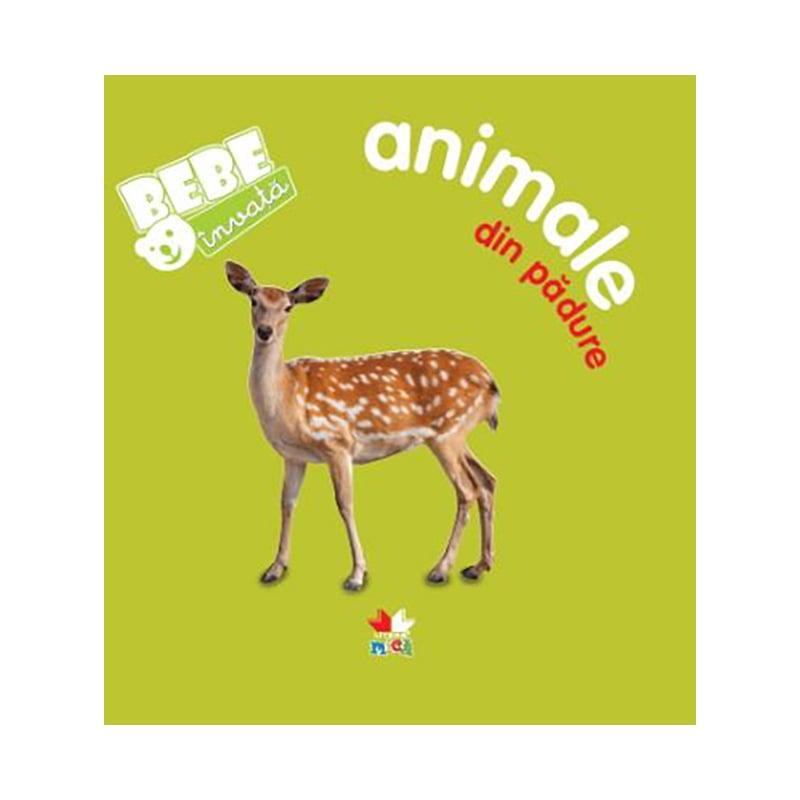 Carte copii Editura Litera, Bebe invata, Animale din padure