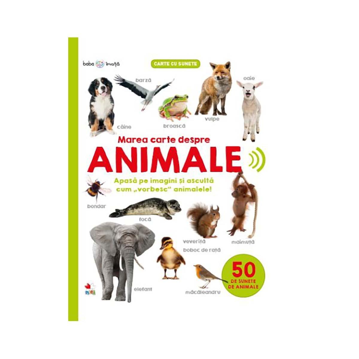 Carte Editura Litera, Bebe Invata, Marea carte despre animale
