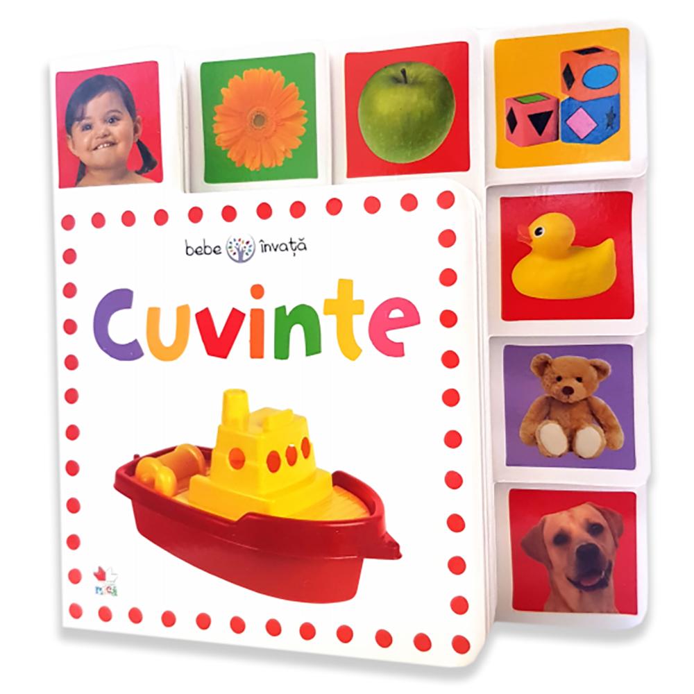 Carte Editura Litera, Cuvinte. Bebe invata. Minitab