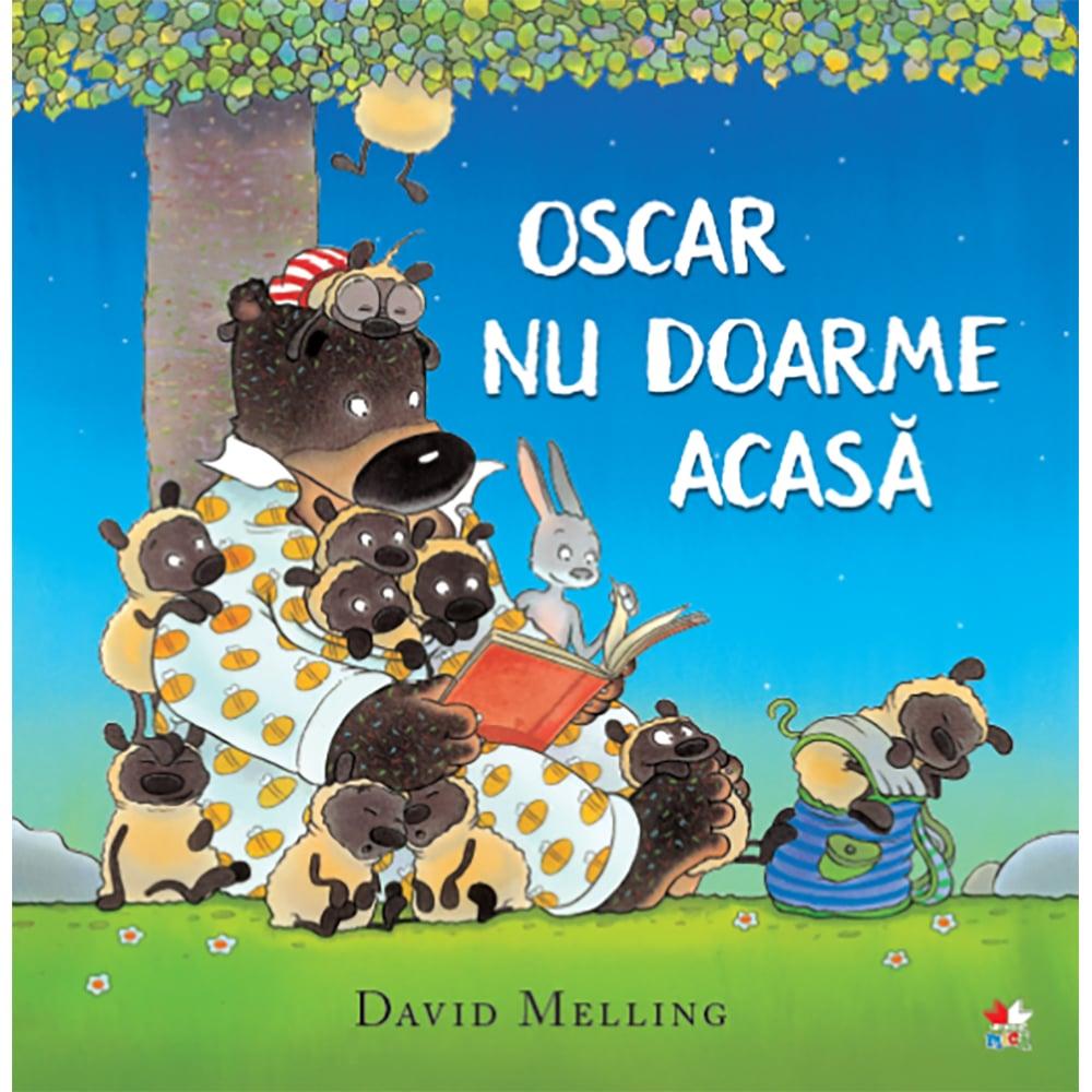 Carte Editura Litera, Oscar nu doarme acasa, David Melling