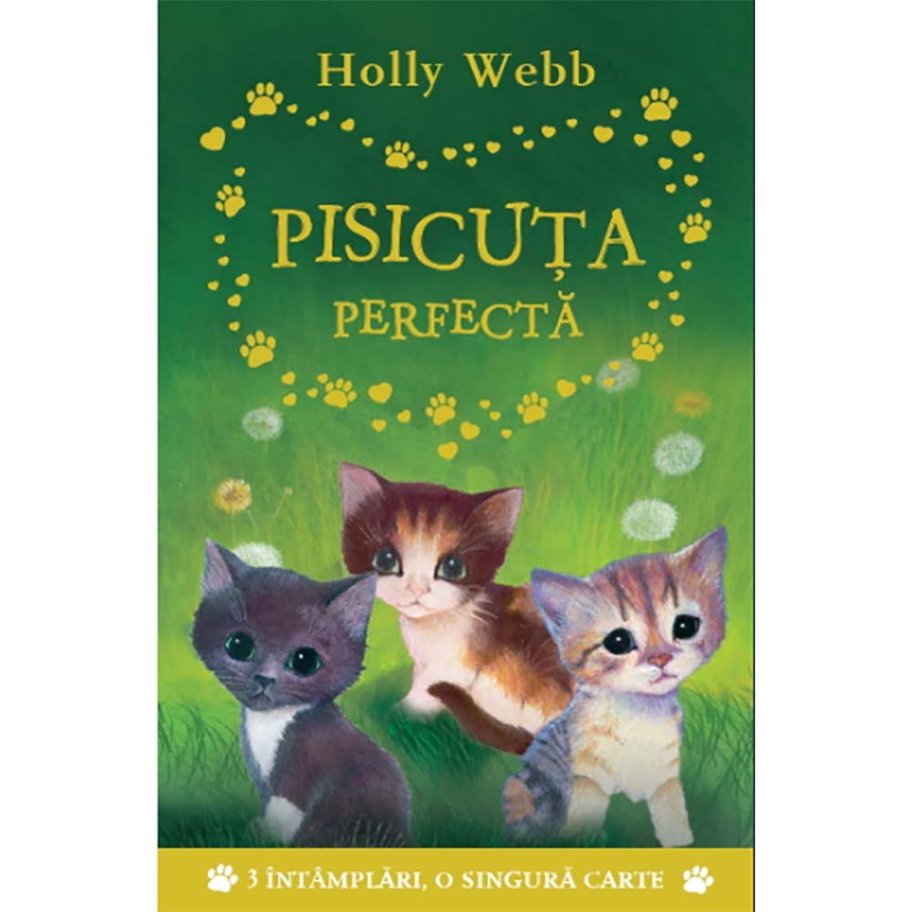 Carte Editura Litera, Pisicuta perfecta, Holly Webb