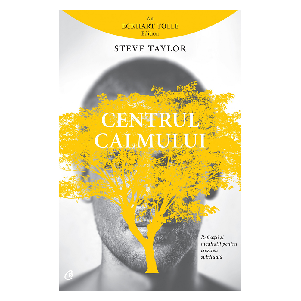 Centrul calmului, Steve Taylor imagine