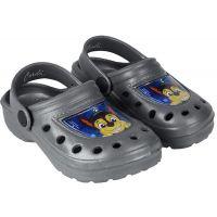 20201071G Papuci cu imprimeu Paw Patrol, Gri