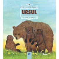 5948489357305_001w Carte Ursul - Animale salbatice in natura, Editura DPH
