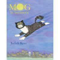 9786069781036_001w Carte Editura Pandora M, MOG in intuneric, Judith Kerr