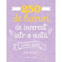 Carte Editura Litera, 250 de lucruri de incercat intr-o viata - pentru bunici, Elise de Rijck