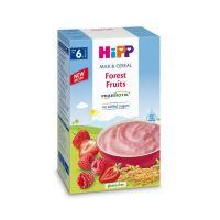 H113812_001w Cereale cu fructe de padure Hipp, 250 g, 6 luni+