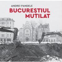 Bucurestiul mutilat, Andrei Pandele