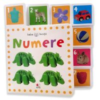 CARTBI80_001w Carte Editura Litera, Numere. Bebe invata. Minitab