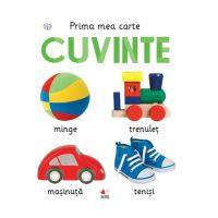 CARTDIV28_001w Carte Editura Litera, Prima mea carte. Cuvinte