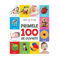 CC18_001 Carte Editura Litera, Primele 100 de cuvinte