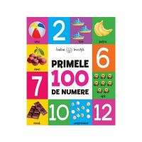 CC55_001 Carte Editura Litera, Primele 100 de numere