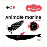 9786060734918 Animale marine, Bebe, Montessori, 0-12 luni