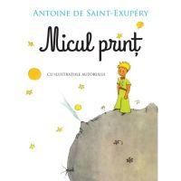 CFS52_001w Carte Editura Litera, Micul print, Antoine de Saint-Exupery