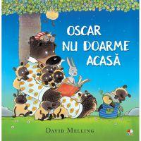CPB223_001w Carte Editura Litera, Oscar nu doarme acasa, David Melling