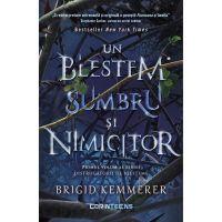Distrugatorii de blesteme, Un blestem sumbru si nimicitor, Brigid Kemmerer, Vol. I