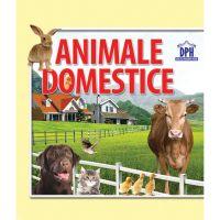 Animale domestice, carte pliata