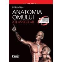 EDU.277_001w Carte Editura Corint, Atlas scolar anatomia omului  - editie revizuita, Florica Tibea