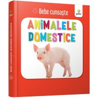 Bebe cunoaste Animalele Domestice