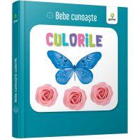 Bebe cunoaste Culorile