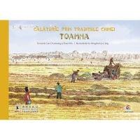 JUN.1317_001w Carte Editura Corint, Calatorie prin traditiile Chinei. Toamna, Gao Chunxiang, Shao Min