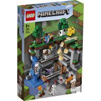 LG21169_001w LEGO® Minecraft™ - Prima aventura (21169)