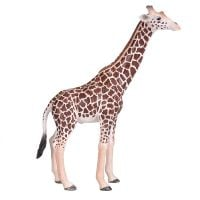Figurina Mojo, Girafa Male