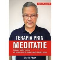 Terapia prin meditatie, Stefan Pusca