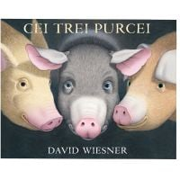 PX257_001w Carte Editura Arthur, Cei trei purcei, David Wiesner