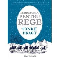 Scrisoarea pentru rege, Tonke Dragt