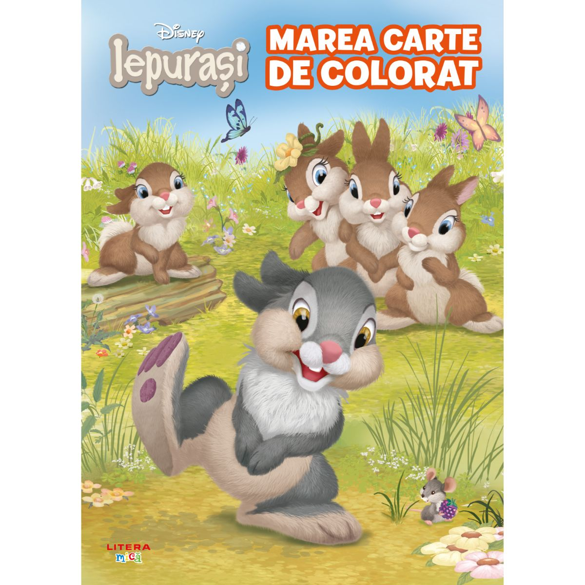 Disney Iepurasi, Marea carte de colorat