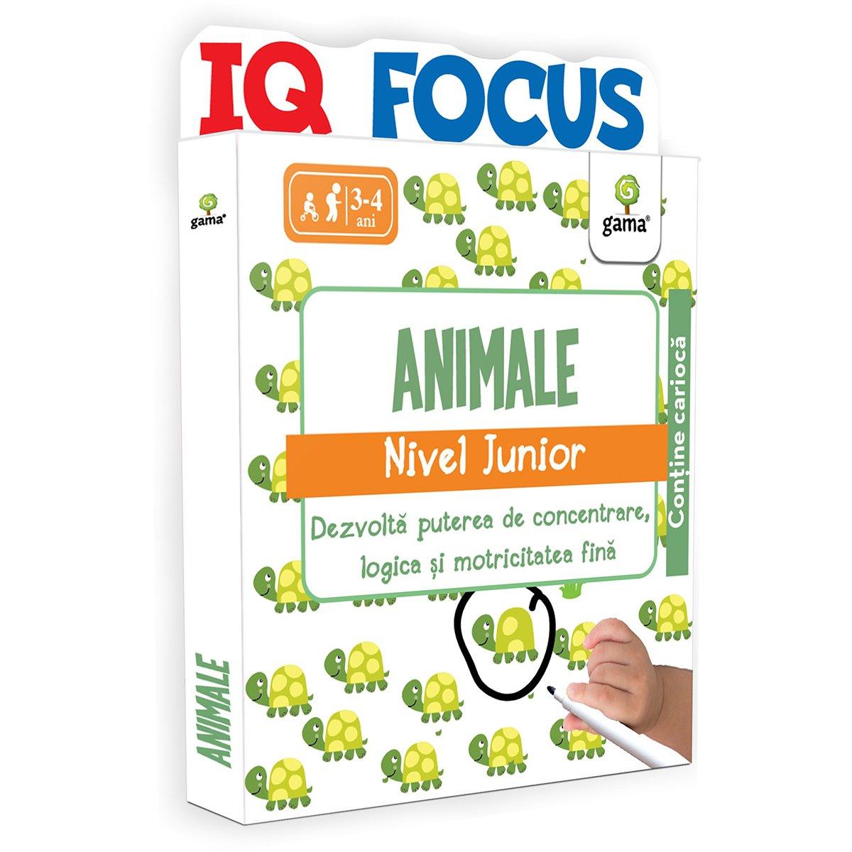 Editura Gama, Animale, Nivel Junior