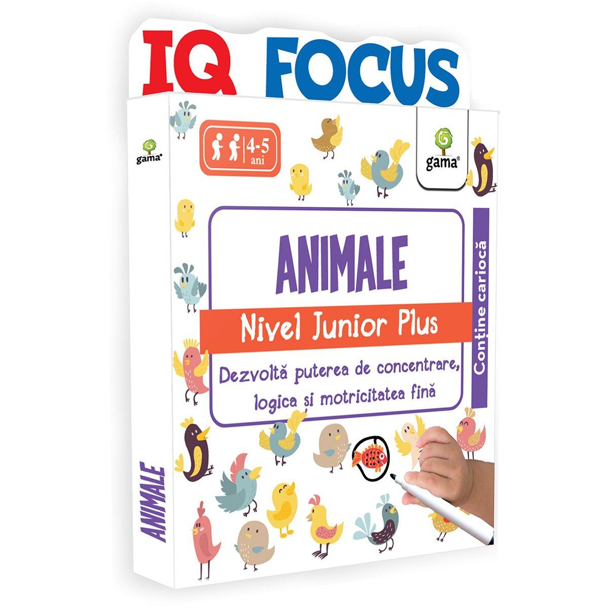Editura Gama, Animale, Nivel Junior Plus