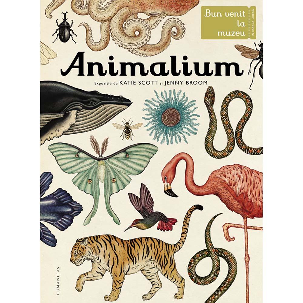 Carte Editura Humanitas, Animalium, Katie Scott