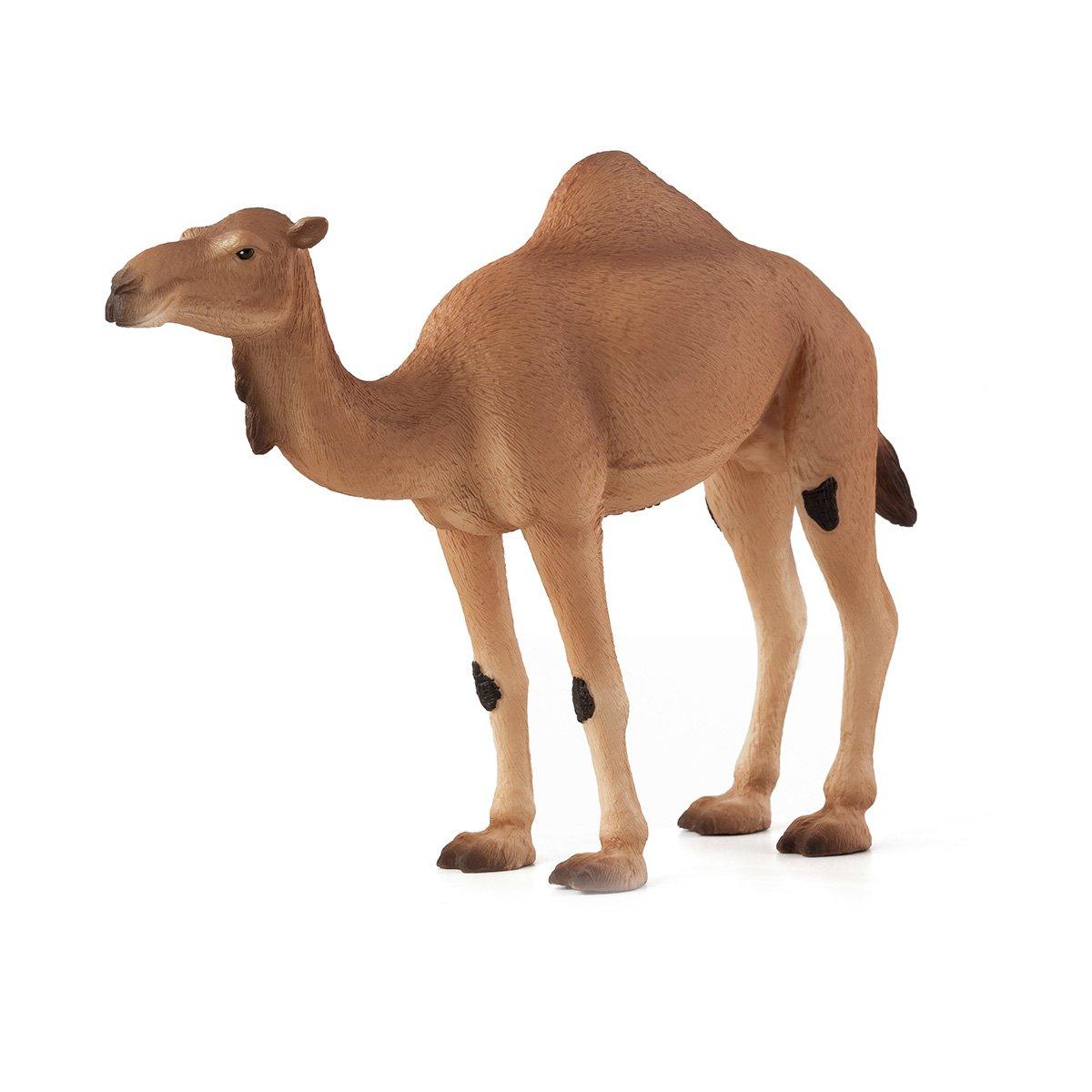 Figurina Mojo, Camila Araba