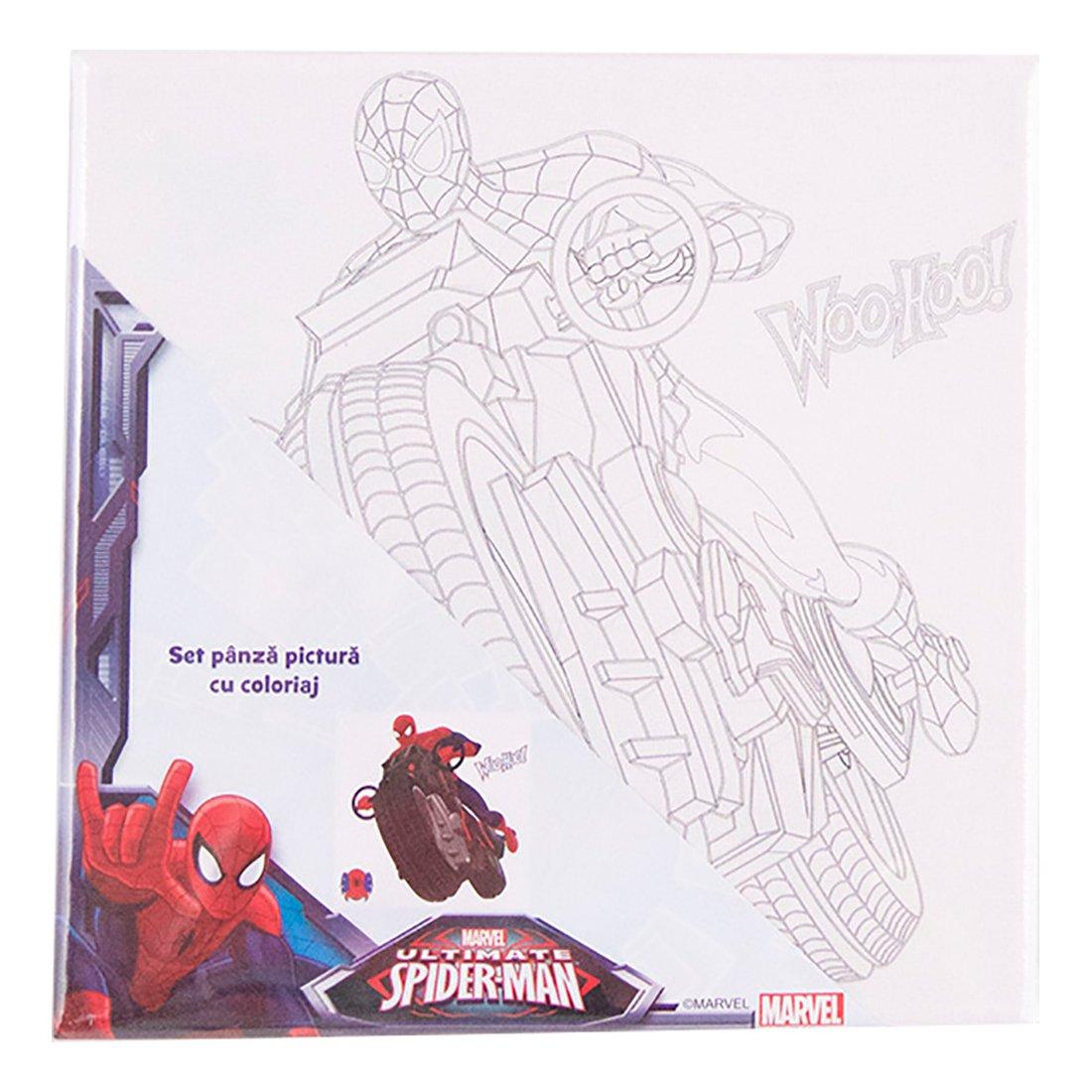 set pictura pe panza 20 x 20 cm - spiderman